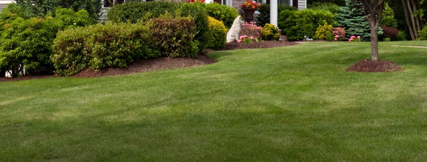 Charming Lawn Care