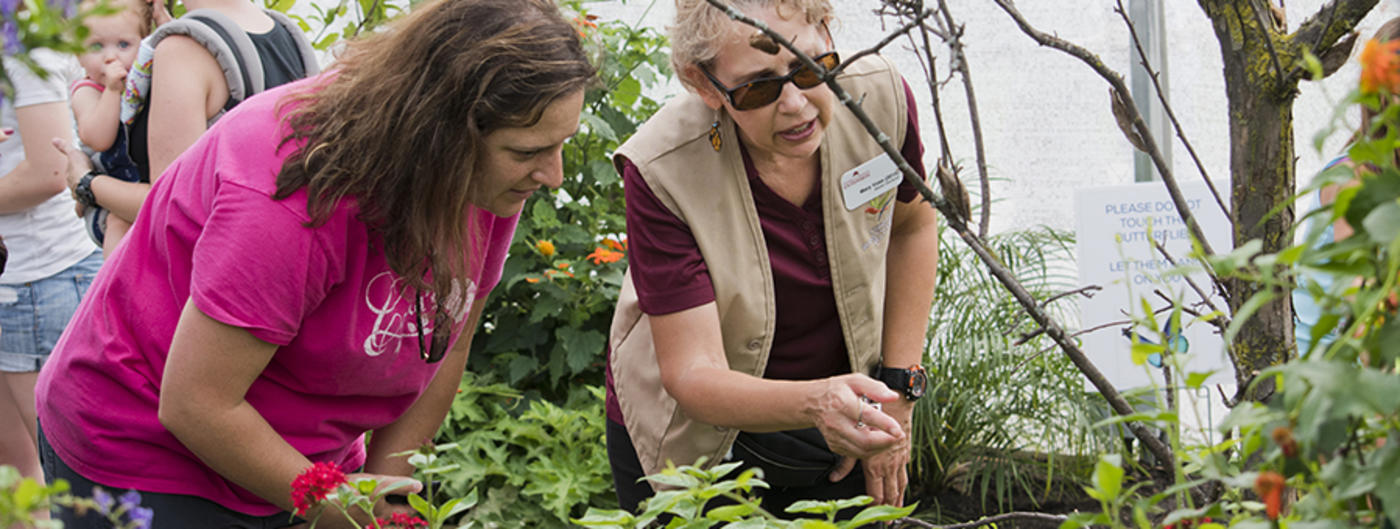 Master Gardener volunteer interacting with person.