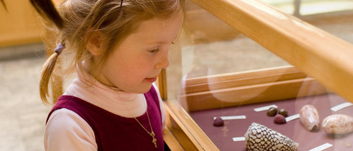 Little girl looking at museum artifacts