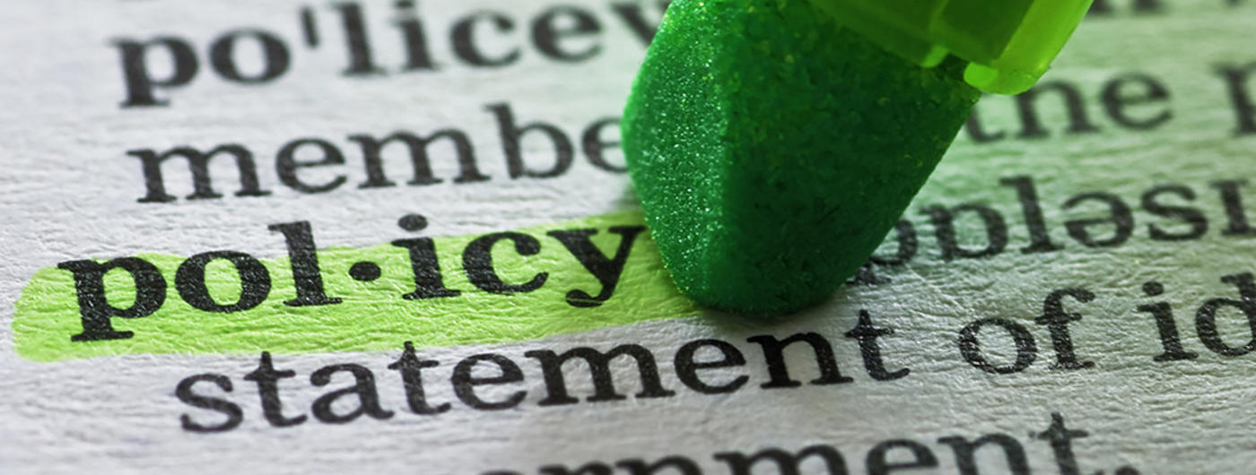 Policy definition with highlight