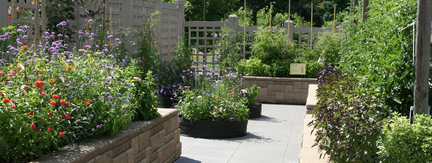 Several raised garden beds with many varieties of flowers, vegetables and herbs on an outdoor patio