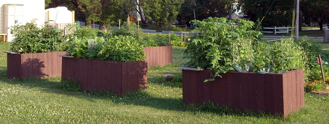 Four raised bed gardens made of fence posts that have been cut in half. Two raised beds contain tomatoes, and the other two contain a variety of green vegetables. The beds sit on a green lawn with white clover, and there is white building on the left.