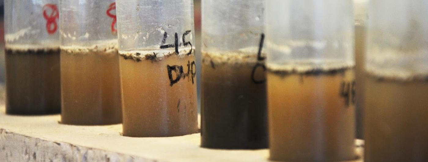soil and water in vials.