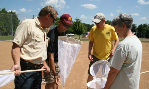 volunteers look at insects they caught in nets for research