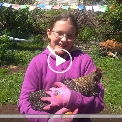 4-H child holding poultry