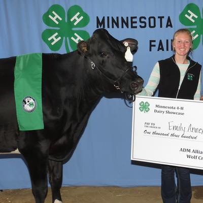 Annexstad and 4-H presenter with her cow and a big check at Minnesota State Fair