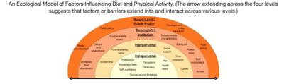 ecological model of factors influencing diet and physical exercise