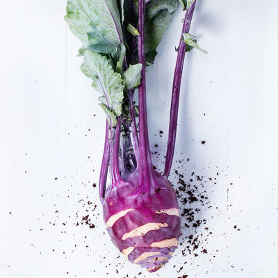 Harvested purple kohlrabi with green leaves coming out of its purple stems