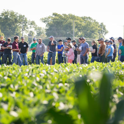 Large group of people in crop field