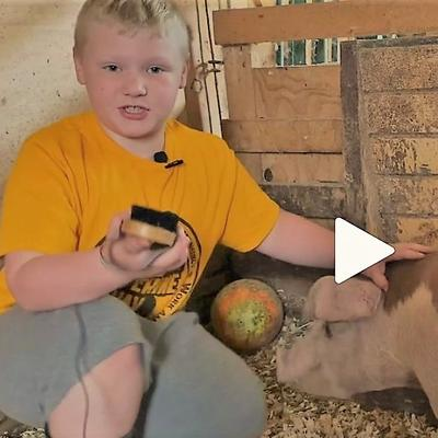 video screen image of a boy and his pig