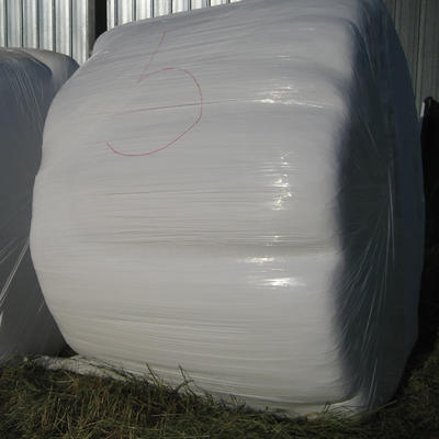 Round hay bale wrapped in plastic.