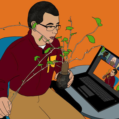 Illustration of 4-H educator presenting online learning about plants