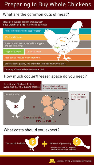 Diagram showing the sections of meat on a broiler chicken with different cuts listed that would make up a typical quantity of meat to expect from a whole chicken with a live weight of 6 pounds. Cuts: neck, breast, wing, thigh, leg. The details of the text on this graphic are in the text box with the image. Details are also in the description of the linked PDF.