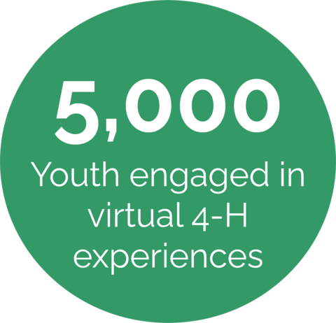 5,000 youth engaged in virtual 4-H experiences