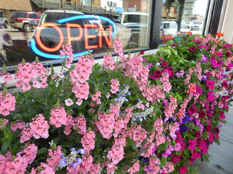 Open sign in window with colorful flowers below the window.