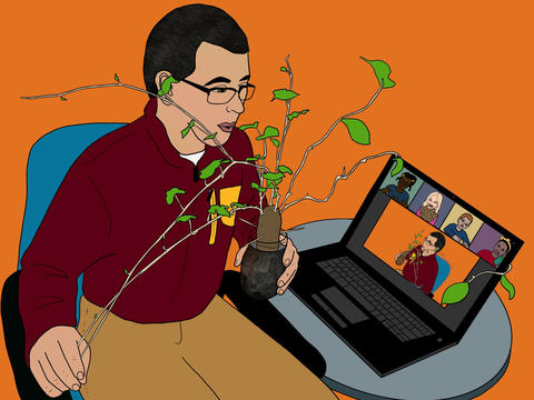 Illustration of Extension educator showing potato vine during a Zoom webinar