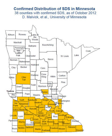 State of Minnesota map with counties identified, southern portion of state coded in yellow.