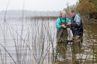 Man and woman in lake looking for invasive species