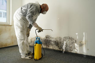 Man treating mold
