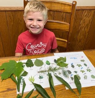 Owen with leaves bingo