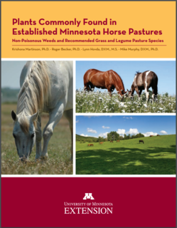 Cover of book Plants Commonly Found in Established Minnesota Horse Pastures